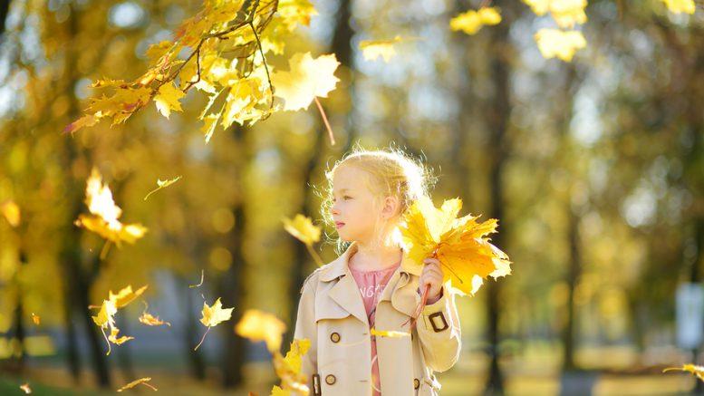 Stockfoto-ID: 310450336 Copyright: maximkabb, Bigstockphoto.com